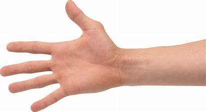 Stretches Hand Wrists Strain Hands Right Wrist