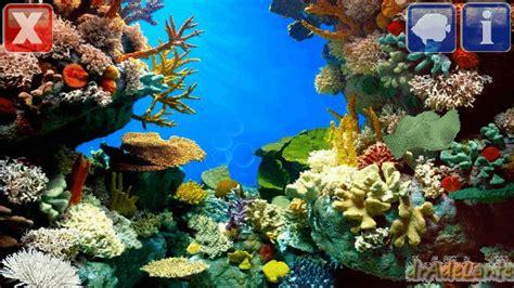 Animated Aquarium Wallpaper Gif - fish tank gif wallpaper top backgrounds wallpapers