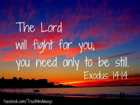 What Was Promised And What Needs To Be Exodus 14 14 Scripture Inspiration The