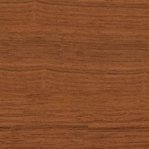 Walnut wood fine medium color texture seamless 04416