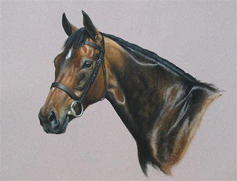 horses  pastel images  pinterest horses