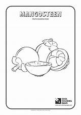 Coloring Mangosteen Pages Guillotine Cool Template Fruits Mango Loquat sketch template