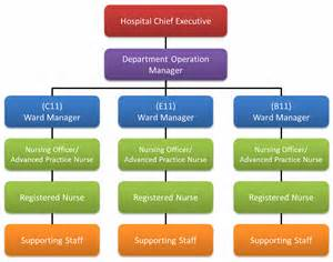 Private Medical Office Organizational Charts