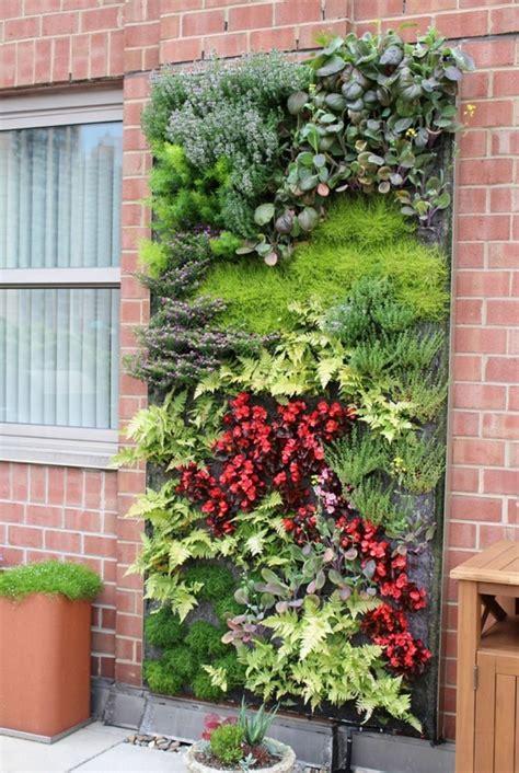 stunning vertical garden ideas    home fresh  cool vertical garden design
