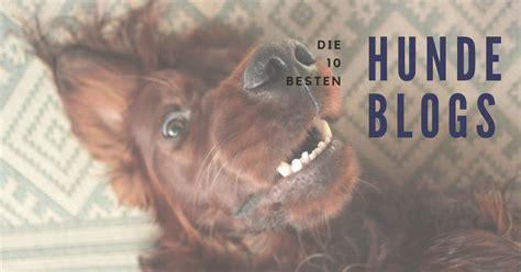 Die 10 Besten Hundeblogs