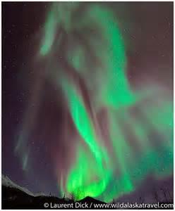 Northern Lights Tours Alaska
