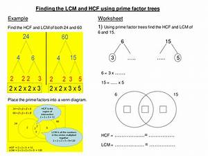 Lcm And Hcf From Factor Trees Scaffold Worksheet By