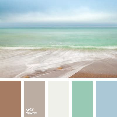 turquoise and orange area color of color palette ideas