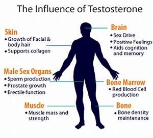Best Testosterone Booster Supplements  U2013 Top 3 For 2015