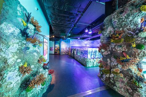 cairns aquarium  research facility