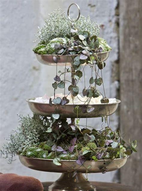etagere blumen im blumentopf winterpflanzen pflanzen dekor