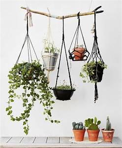 Plantes à Suspendre : suspension pour plante questions r ponses vid o ~ Premium-room.com Idées de Décoration