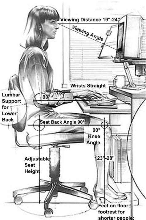 Anthropometry   Wikipedia