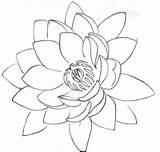 Lotus Flower Tattoo Outline Designs Tattoos Drawing Stencil Cool Stencils Simple Flash Metacharis Deviantart Drawings Petals Water Amazing Photobucket Sketches sketch template