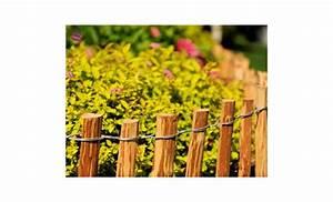 Piquet En Bois Pour Cloture : piquets en bois cl ture lattis en bois de noisetier impr gn cl ture de jardin cl ture ~ Farleysfitness.com Idées de Décoration