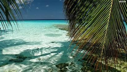 Tropical Desktop Backgrounds Wallpapers Ocean Nature Maldives