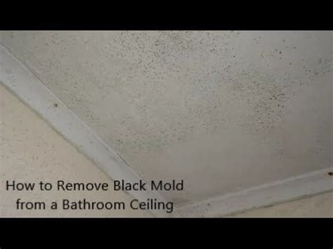 remove black mold   bathroom ceiling mold
