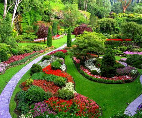 Mis Decoraciones Jardin Florido