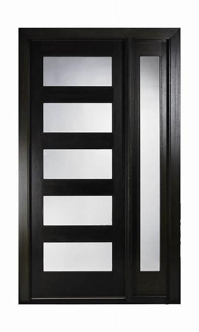 Doors Door Entry Modern Contemporary Pella Double