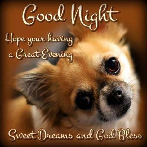 good night  sweet dreams good night