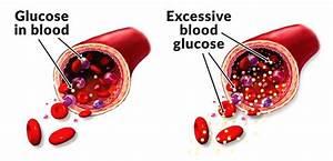Blood Sugar Levels And Paleo