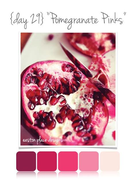 pomegranate color pomegranate pinks color palette in time for s
