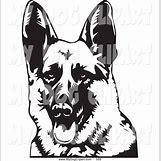 German Shepherd Face Profile | 1024 x 1044 jpeg 260kB