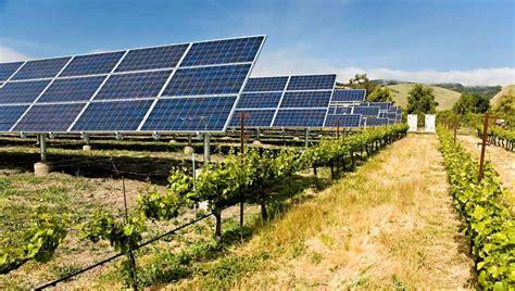 op駻a chambre d agriculture photovoltaïque les centrales au sol sont une opportunité pour les apiculteurs quartier