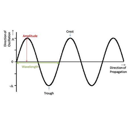 diagram of transverse wave 28 images juliascience