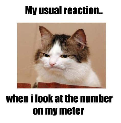 Diabetes Cat Meme - 78 best images about type 1 diabetes on pinterest low blood sugar type one diabetes and