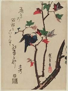 Utagawa Hiroshige: White-headed Bird on Maple Branch ...