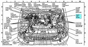 Ford Expedition Engine Diagram