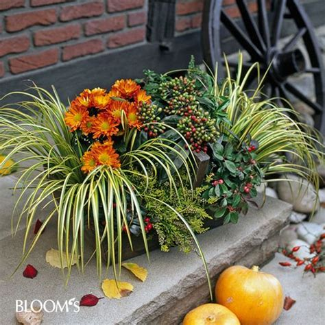 Garten Herbst Bepflanzung by Zum Muttertag Geschenk Mit Herz Selber Machen Autumn