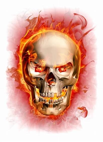 Skull Flaming Fire Transparent Flame Clipart Skulls