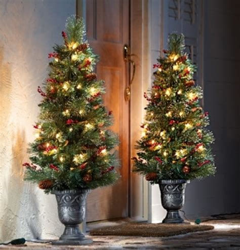 top christmas tree outside decoration tree doorstep decor pictures photos and images for and