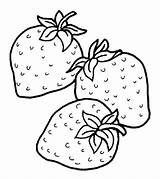Strawberry Coloring Pages Fruits Little sketch template