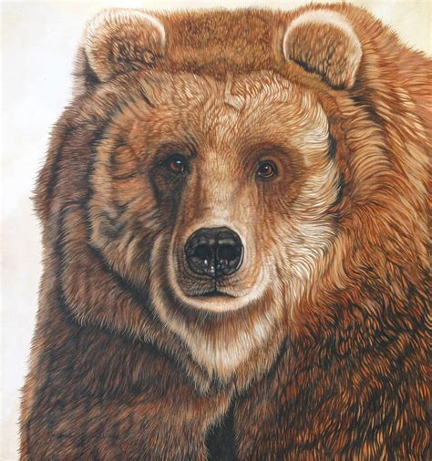 jacquie vaux artwork  grizz male grizzly bear