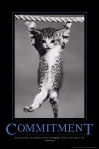 cat poster a motivational speech from the hang in there cat pleated