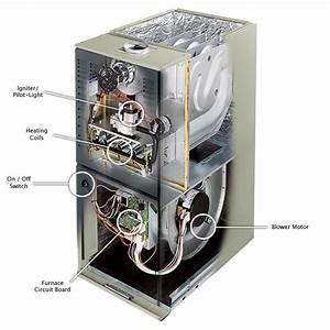 49 Gas Furnace Diagram  Rheem Gas Furnace Wiring Gasfree Download Printable