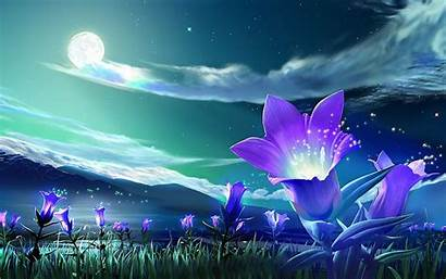Windows Flowers Wallpapers Backgrounds Tag