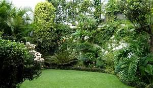 paysagiste a hennebont en morbihan creation et entretien With idee amenagement jardin paysager 1 haie de bambous une idee de plus en plus seduisante