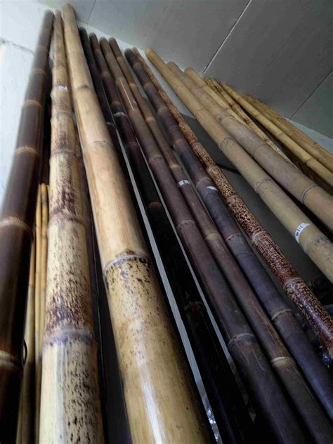 Stuoie Di Canne by Arelle In Bamb Arelle Di Bambu Canne Di Bamboo Stuoie