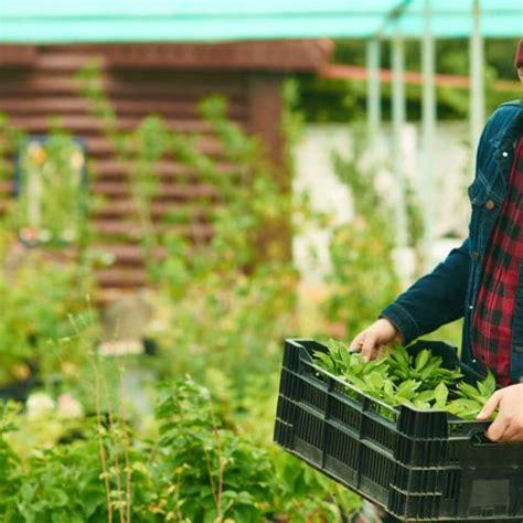 Garten Und Landschaftsbau Ausbildung Verdienst by Ausbildung Zum G 228 Rtner Alle Infos Rund Um Die Ausbildung