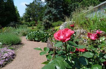 Botanischer Garten Altenburg öffnungszeiten quermania botanischer garten parkanlage und