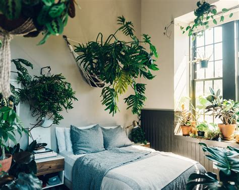 Bedroom Designs With Plants by Tour S Plant Filled Loft P L A N T