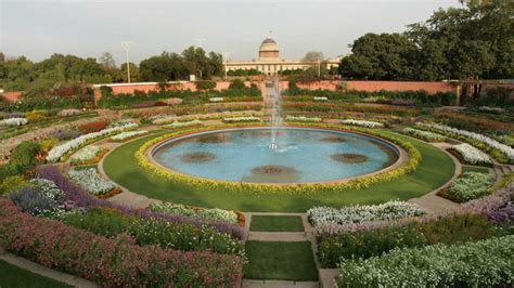 5 steps to recreate a Mughal Garden-inspired landscape in