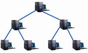 Networking Schooling  Network Topologies