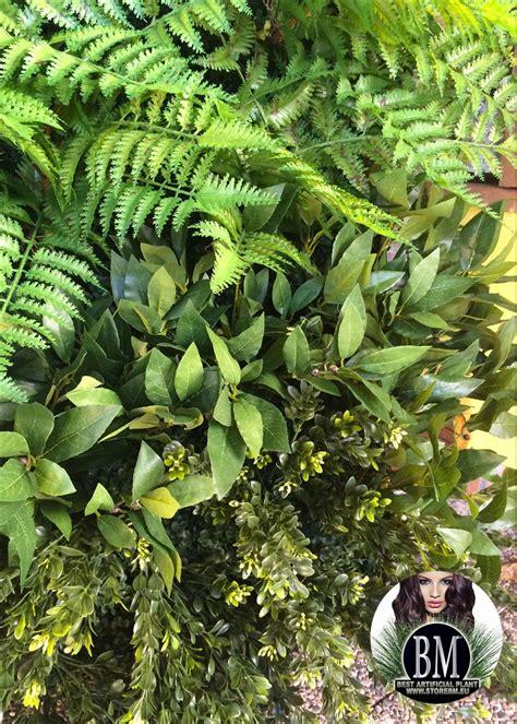 giardino verticale giardino verticale quot