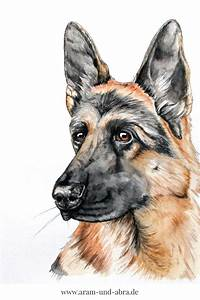 Bild Malen Lassen : illustrationen und portraits von hunden puppies and kitties hund malen hund zeichnen ~ Orissabook.com Haus und Dekorationen