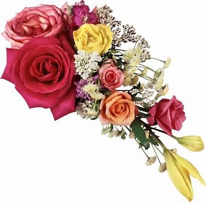 Bouquet Flowers Clipart Photoshop Transparent Frames Basket